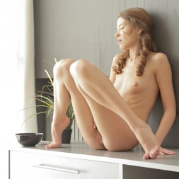 Tini in '21Sextury' Daily Dose Of Touching (Thumbnail 66)
